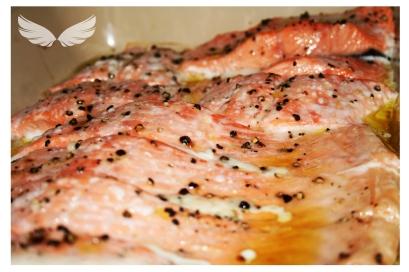 Docs-salmon